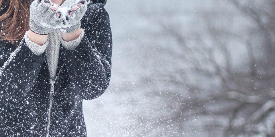 Hoe overleef ik de winter - Himalaya